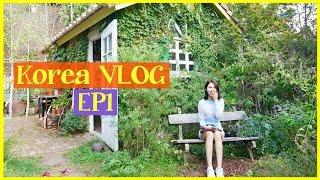 Yumi P-十天韓國自由行之旅Korea VLOG EP1