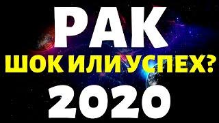 РАК ПРОГНОЗ НА 2020 ГОД на 12 сфер жизни таро расклад