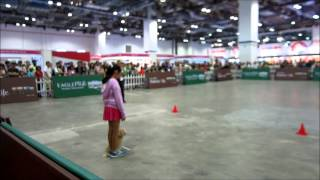 Petas 5th Dog Obedience Competition, Novice Class - Perfect Recall Exercise.