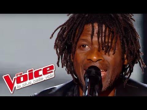 Stephan Eicher – Déjeuner en paix   Emmanuel Djob   The Voice France 2013   Demi-Finale