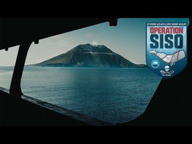 3 anni in difesa del Mediterraneo, Victory of the Whale