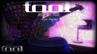 Tool - Right In Two { Bass Cover By Elia Dayoub }