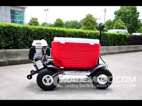 Gas Ice Chest Scooter GS4301