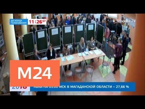 Все избирательные участки обследовали сотрудники полиции с собаками - Москва 24