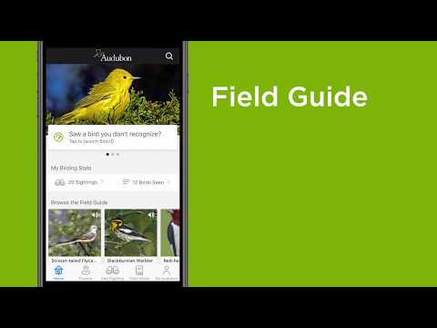How To Use The Audubon Bird Guide App
