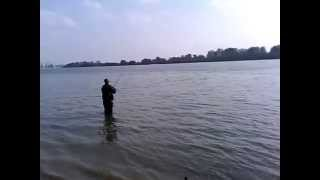Ловля Сазана на Дунае.Измаил,на пляже!Fishing on the saz Dunae.Izmail on the beach !(, 2015-01-20T09:40:37.000Z)