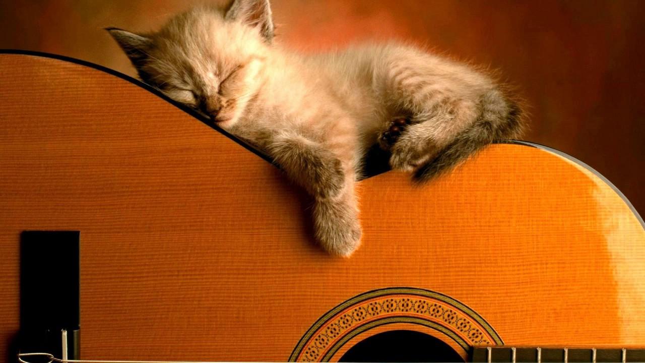 Musica relajante reiki 6 horas