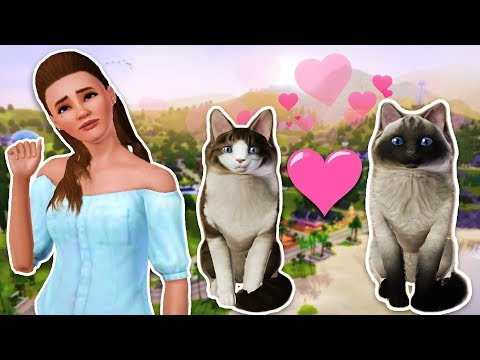 NEW KITTENS!! - THE SIMS 3 PETS (Sims 3 Pets, Episode 2)