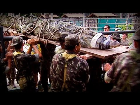 Amazonia: The price of life (full documentary)
