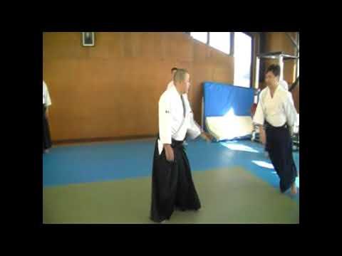 IWAMA STYLE AIKIDO  Okayama Aiki Shuren Dojo H29.12.3