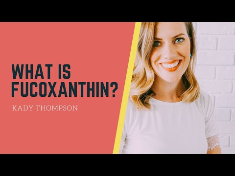 What is Fucoxanthin? ������