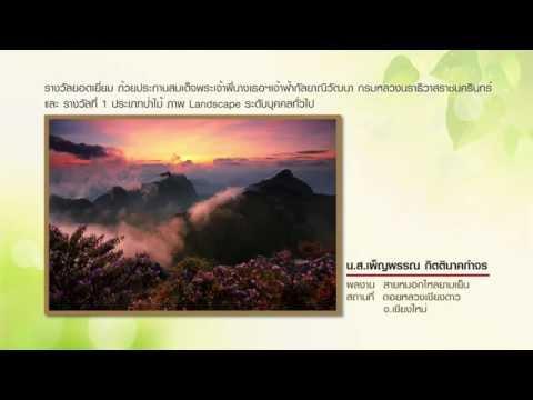 """ประกาศผลการประกวดภาพถ่ายอนุรักษ์ธรรมชาติ """"สัตว์มีค่า ป่ามีคุณ"""" 2014"""