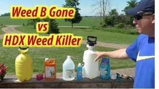 Weed Killer Challenge: Vinegar Weed B Gone vs HDX