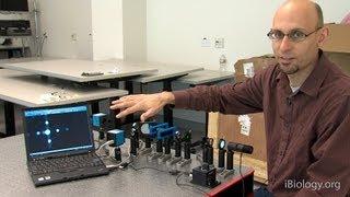 Microscopy: Abbe Diffraction (Kurt Thorn)