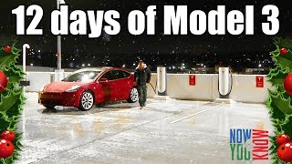 Awesome Supercharging! - 12 days of Model 3!