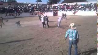 """""""EL Tongo"""" De Tlaunilolpan Hidalgo"""