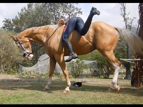 bareback isnt easy!
