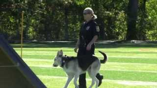 Lehigh Valley Police K9 Time Trial Competition - 9.22.13