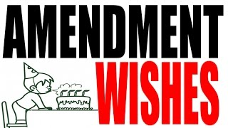 Constitutional Wishes: How Would YOU Amend It?