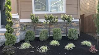 Gambar cover How to Landscape a Front Yard Quick and Easy way.