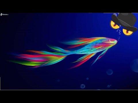 Los 10 peces mas hermosos del mundo los peces mas - Los peces mas bonitos del mundo ...