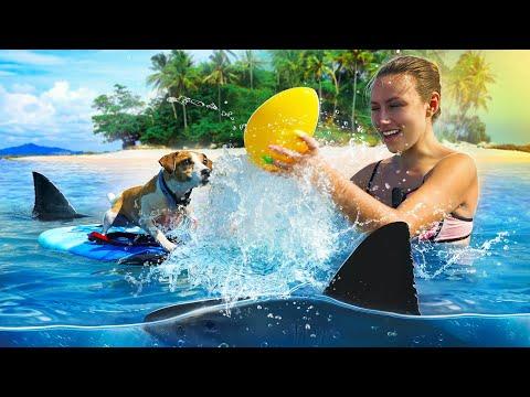 Собака Джина на Море - Аквапарк для Собаки - Кипр | Elli Di Pets