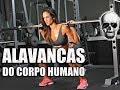 Alavancas do Corpo Humano: Interfixa, In