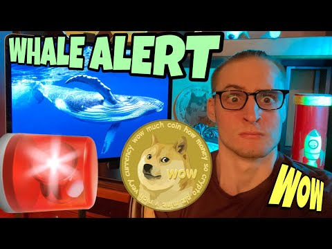 The Dogecoin Whales JUST STARTED GOING CRAZY ⚠️