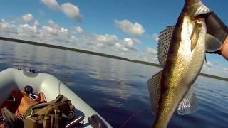 Рыбалка на Рыбинском водохранилище июль 2017