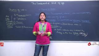 The Fundamental Unit Of Life: Structure of Cell - Plasma Membrane, Cytoplasm & Nucleus - 9th: 03/06