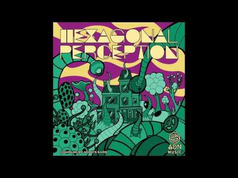 03 - Vicious Cactus - Greesive [VA - Hexagonal Perception - ADN Music]