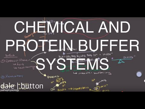 Chemical and Protein Buffers
