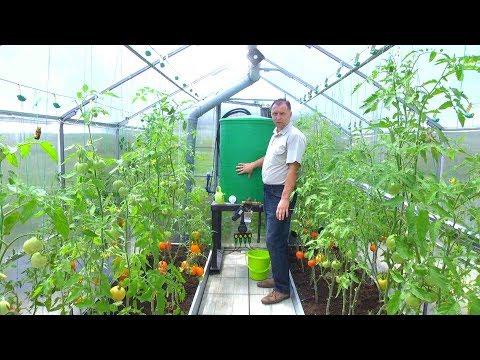 видео: Умная теплица своими руками. Как автоматизировать выращивание овощей //forumhouse