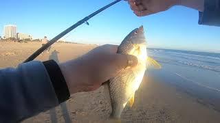 Fishing Santa Monica 2