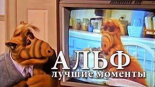 Сериал #Альф | Подборка лучших моментов
