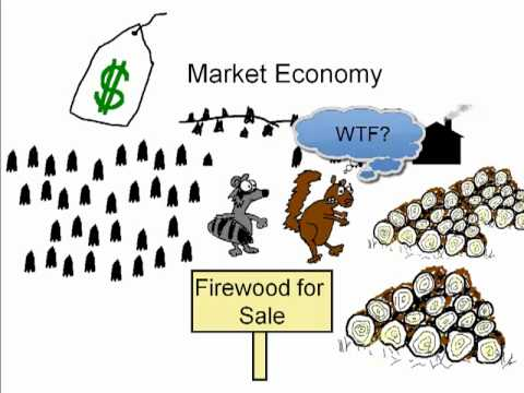 Economic systems (Not kid approved).mp4 - YouTube