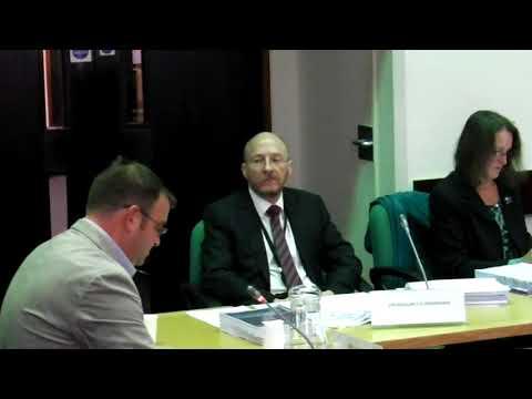 171023 Scrutiny Committee - Mr. Higgins