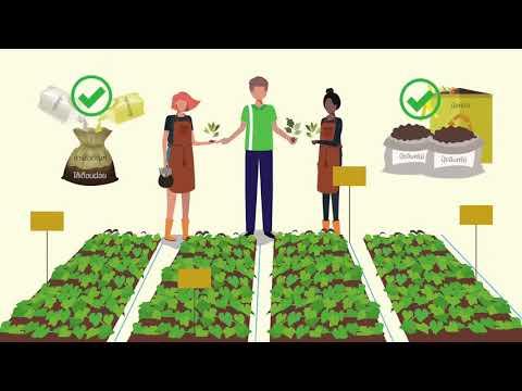 งานวิจัยและพัฒนารูปแบบส่งเสริมการเกษตร