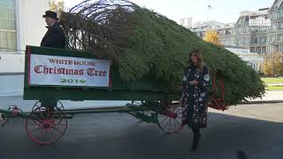 Download The First Lady Participates in the White House Christmas Tree Delivery Mp3 and Videos
