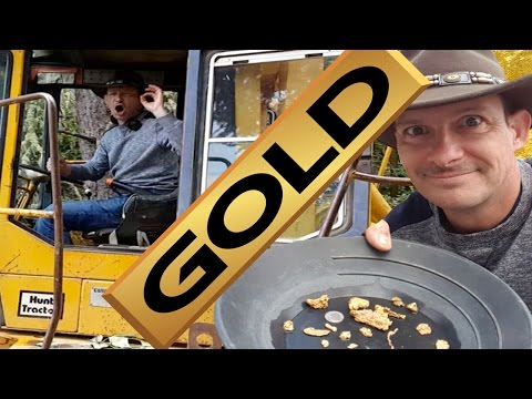 Gold Mining With Amazing Results!