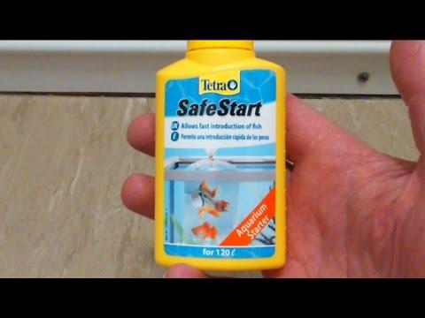 Tetra Safe Start Does It Work Youtube