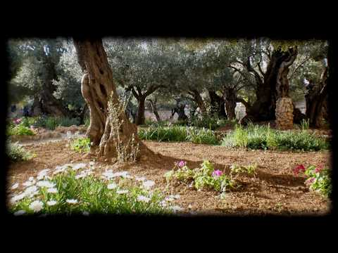 The Garden   Kari Jobe   Worship Video with lyrics