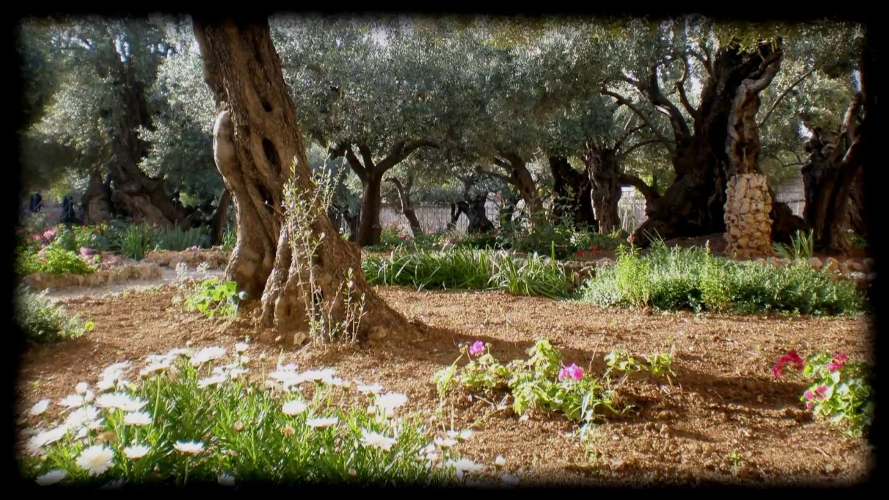 The Garden Kari Jobe Worship Video with lyrics - YouTube