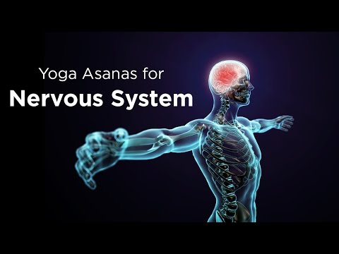 Yoga Asanas for Nervous System | Yoga exercises | healthy lifestyle