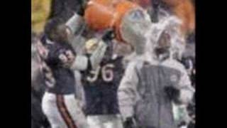 Chicago Bears - 2006 NFC Champions