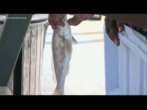 Vilano Beach Pier serves up life lessons for the fishermen who visit it