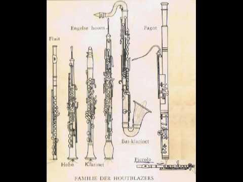 De ontdekkingsreis van Piccolo en Saxo