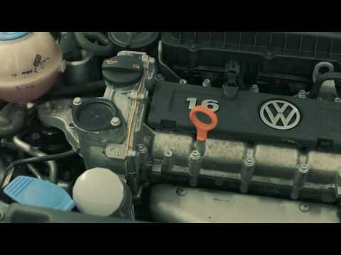 Официальный cервис Volkswagen в Брянске