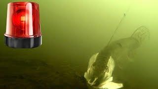 МИГАЛКА ЗАМАНИЛА ЩУКУ Атака щуки Подводная съемка