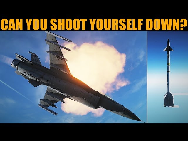 Questioned: Can You Shoot Yourself Down In DCS WORLD?